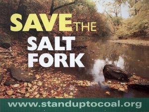 Save Salt Fork poster image 2
