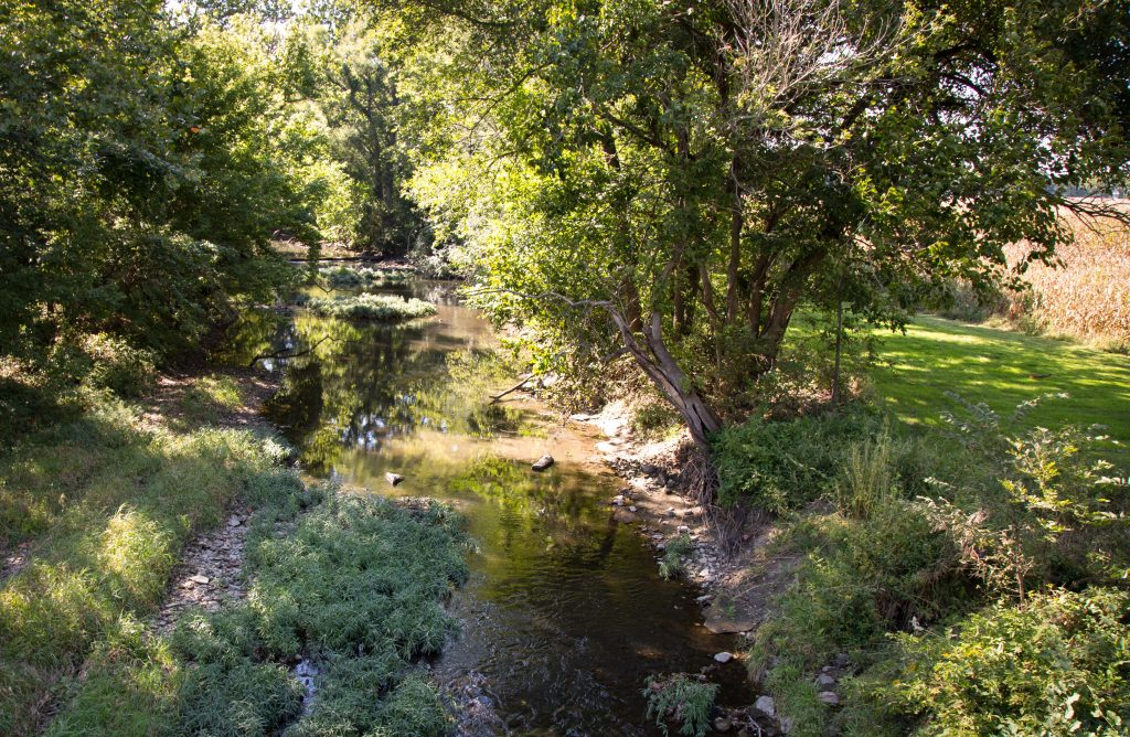 Stony Creek, tributary to the Salt Fork of the Vermilion River