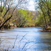 The Sangamon River at Allerton Park